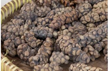 Natural Tueste Indonesia Kopi Luwak Coffee 100% Arabica